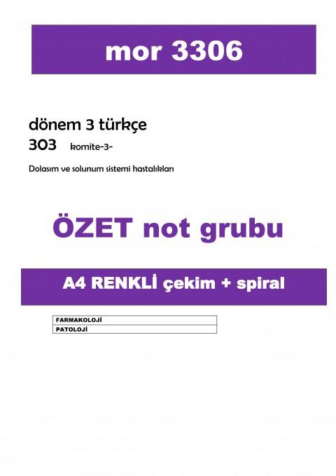 MOR Komite 3 ÖZET NOT GRUBU RENKLİ